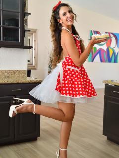 The Naughty Housewife